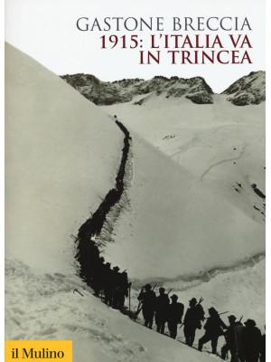 1915: l'Italia va in trincea. Ediz. illustrata