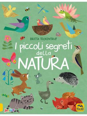 I piccoli segreti della natura. Ediz. a colori