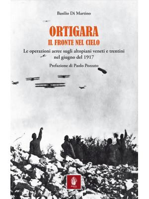 Ortigara. Il fronte nel cielo. Le operazioni aeree sugli altopiani veneti e trentini nel giugno 1917
