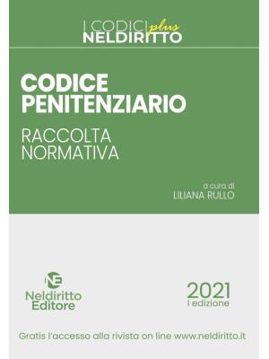 Codice penitenziario. Raccolta normativa. Con Contenuto digitale per accesso on line