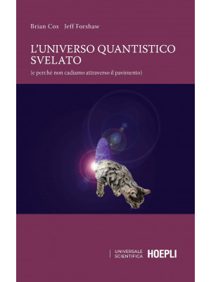 L'universo quantistico svelato (e perché non cadiamo attraverso il pavimento)