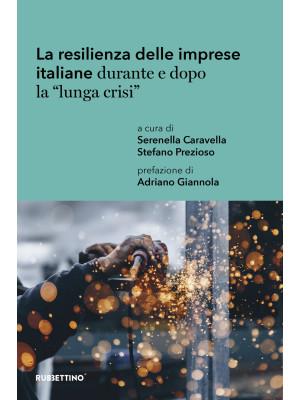 La resilienza delle imprese italiane durante e dopo la «lunga crisi». Un'analisi territoriale