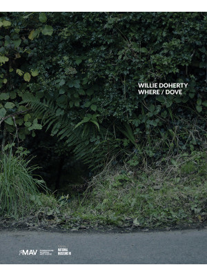 Willie Doherty. Where/Dove