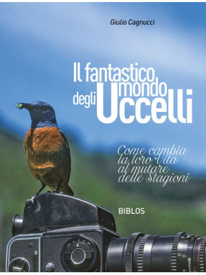 Il fantastico mondo degli uccelli. Come cambia la loro vita al mutare delle stagioni