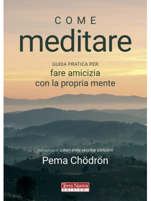 Come meditare. Guida pratica per fare amicizia con la propria mente