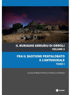 Il nuraghe Arrubiu di Orroli. Vol. 3/1: Fra il bastione pentalobato e l'antemurale