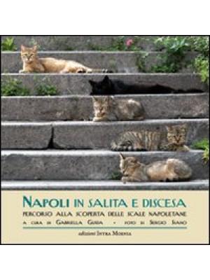 Napoli in salita e discesa. Percorso alla scoperta delle scale napoletane