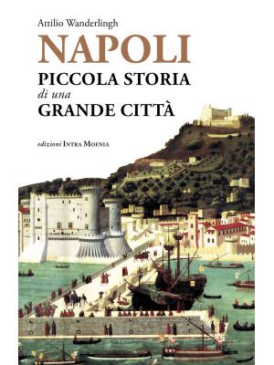 Napoli. Piccola storia di una grande città