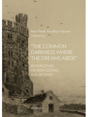 «The common darkness where the dreams abide». Perspectives on Irish gothic and beyond