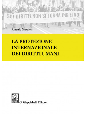 La protezione internazionale dei diritti umani