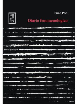 Diario fenomenologico