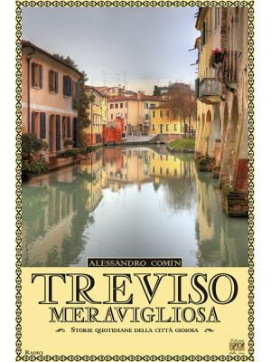 Treviso meravigliosa. Storie quotidiane della città gioiosa