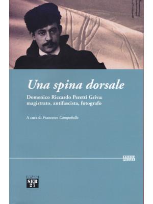 Una spina dorsale. Domenico Riccardo Peretti Griva: magistrato, antifascista, fotografo